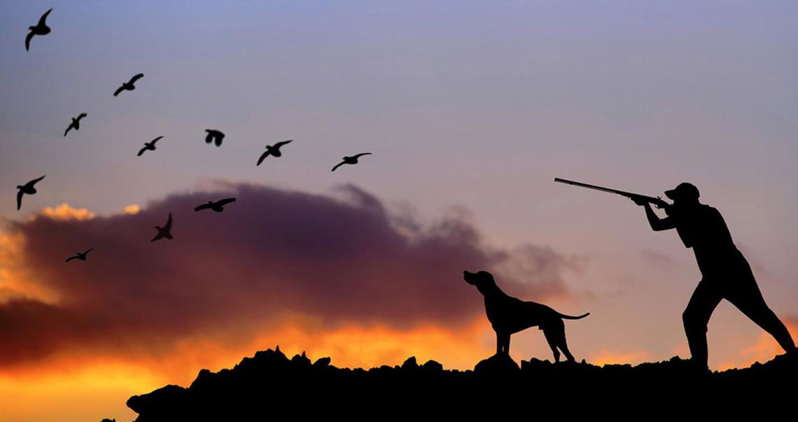 Sospensione stagione della caccia in Sicilia: esultano le associazioni ambientaliste
