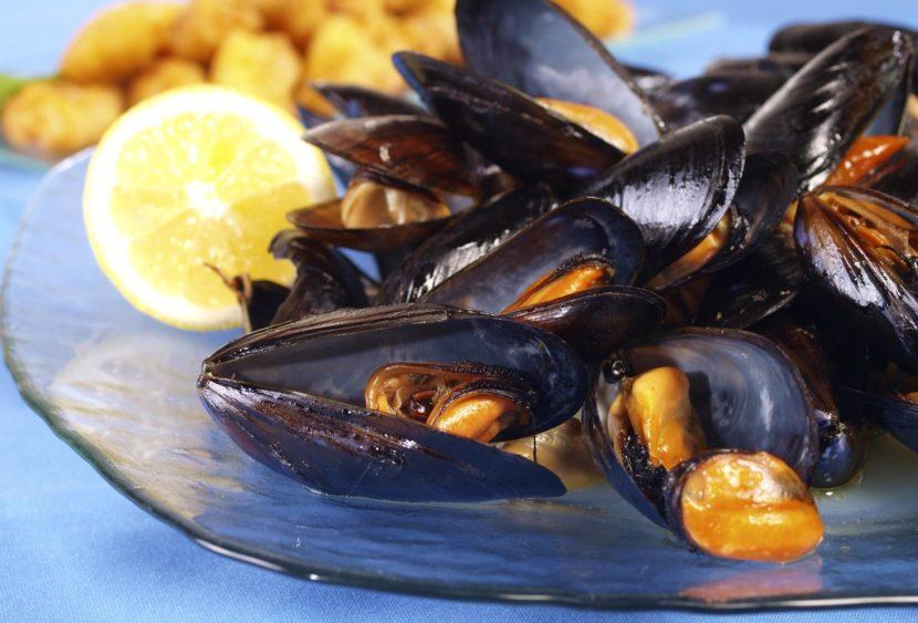Cozze allevate in mare contaminate da tossine Dinophysis