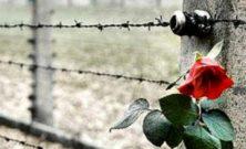 Riflessione sulla Shoah del Coordinamento Nazionale dei Docenti per i Diritti Umani