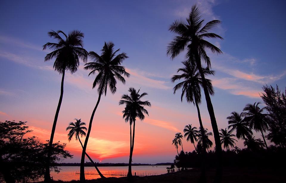 Secondo la classifica di Lonely Planet è lo Sri Lanka il miglior paese da vedere nel 2019