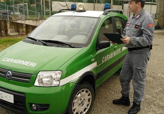 Arrestati per traffico illecito di rifiuti e inquinamento ambientale