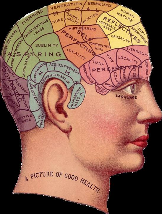 Smemorati? Ecco 5 pratiche abitudini per una memoria impeccabile