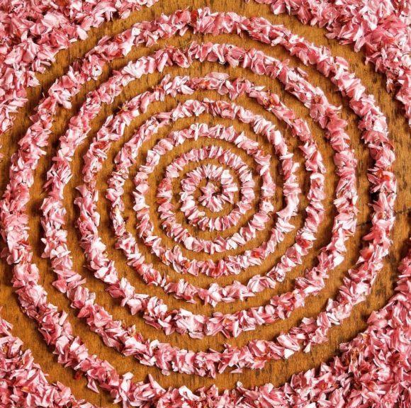 Mandala realizzati con gli elementi naturali, l'arte di James Brunt
