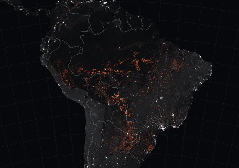 Amazzonia: le novità su incendi e gestione emergenza