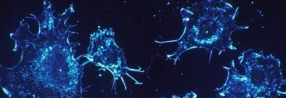 È possibile sconfiggere definitivamente il cancro andando nello spazio