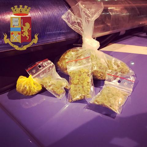Coltiva oltre cinquecento piante di marijuana per un totale di 100kg. Arrestato