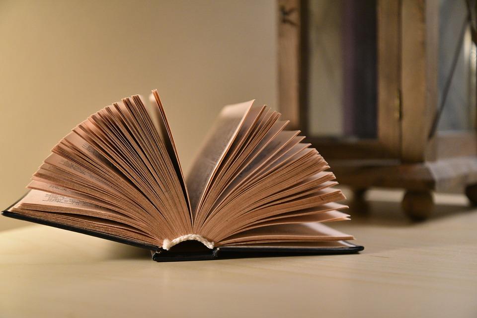 Dati ISTAT: quanti italiani leggono ancora libri e romanzi?
