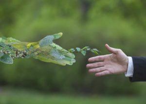 Green Economy, può pesare il clima sui profitti delle aziende e dei mercati?