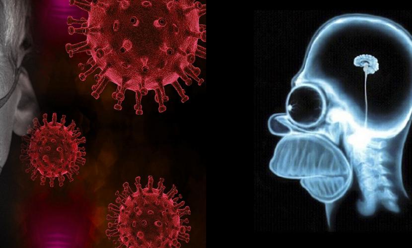 Tra web e realtà: Chi è l'analfabeta funzionale ai tempi del Coronavirus?