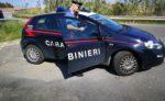 Coltivava piante di Cannabis a San Pier Niceto: arrestato dai Carabinieri