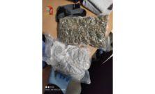 Cannabis a Bologna: sequestrati più di 6 kg