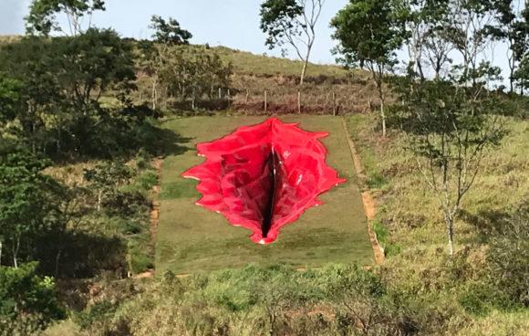 Diva, la vulva del Brasile: la nuova opera d'arte che fa discutere