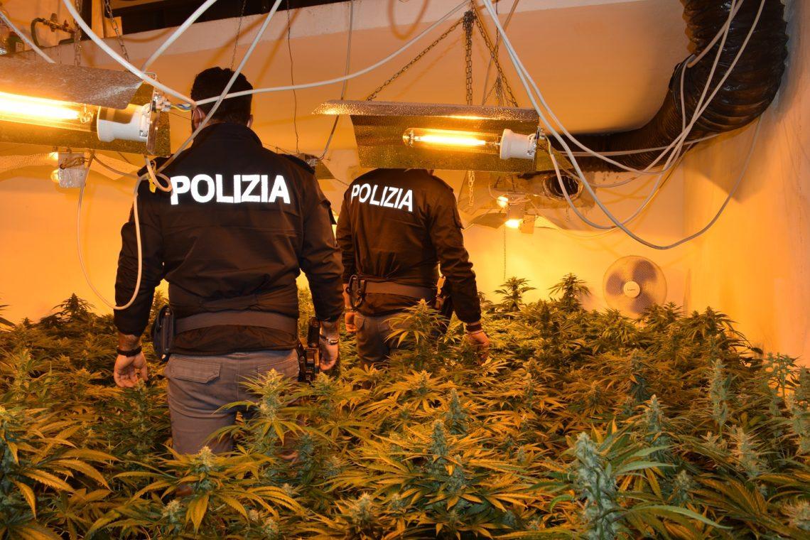 Palermo, polizia scova piantagione di marijuana all'interno di un'abitazione