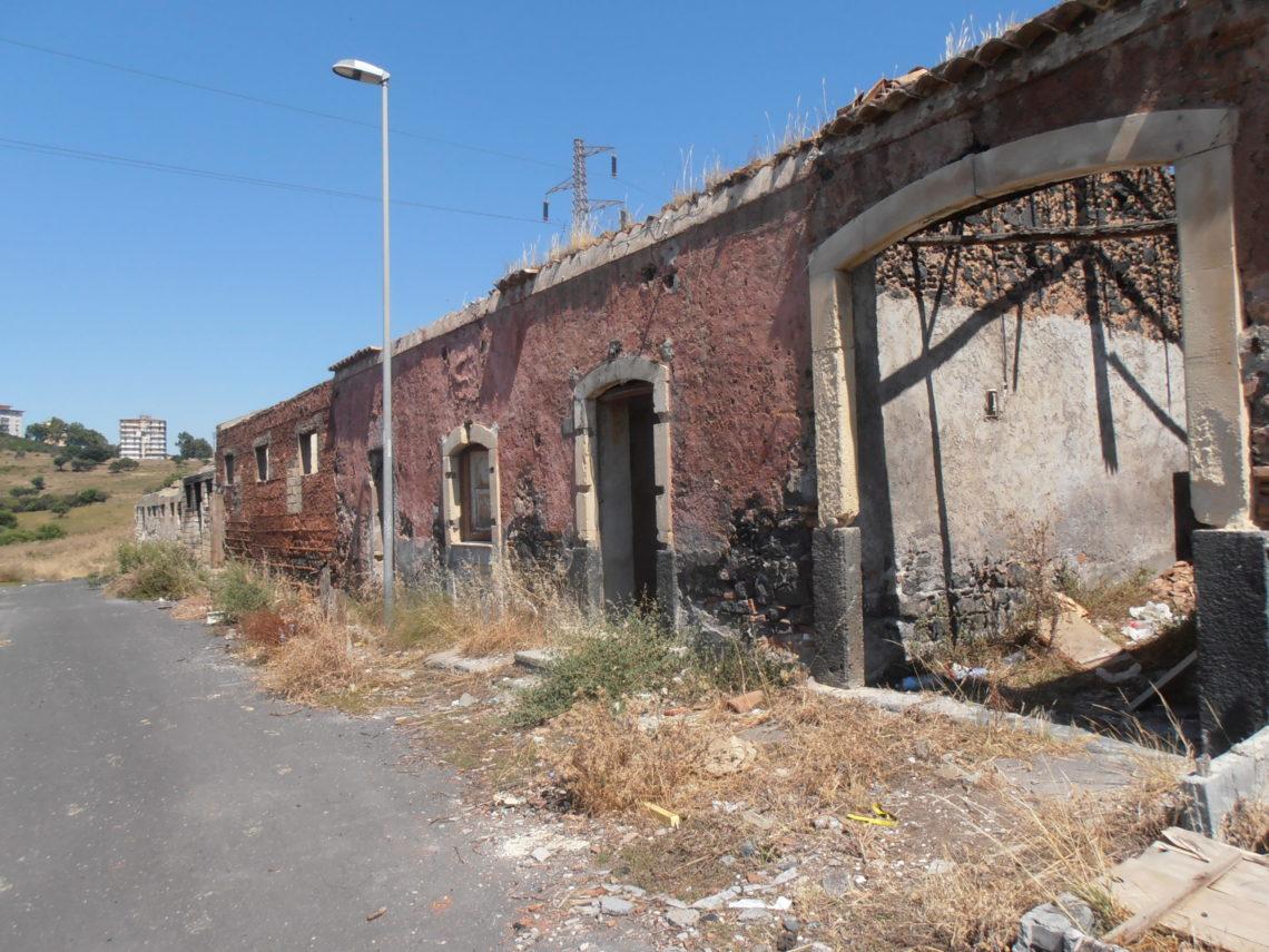 """Parco Monte Po a Catania: """"un progetto comune per salvare il più grande polmone verde della città"""""""