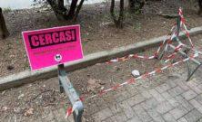 """""""Cercasi panchine"""", la nuova protesta di Torino Tricolore"""