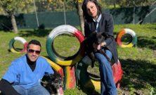 Assistenza gratuita agli animali i cui proprietari sono ricoverati per Covid-19