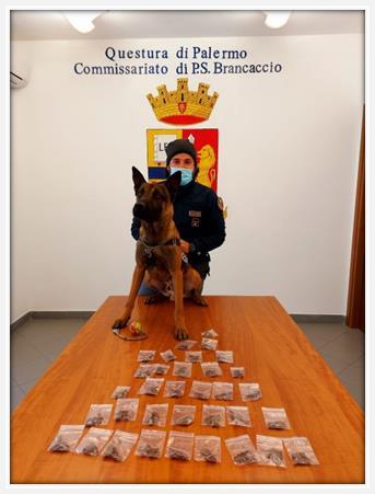 """Palermo, i signori della droga stanati dal """"Re"""" dell'antidroga"""