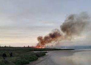 Incendio alla Riserva Naturale di Vendicari: le autorità alzano la voce