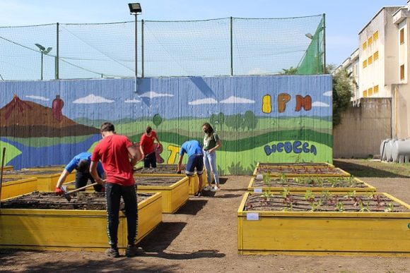 Servizi sociali: al via il progetto di cura di un orto per i minorenni di Bicocca
