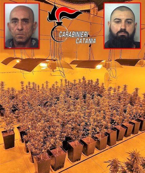 """Catania, sequestrata piantagione di """"skunk"""": arrestati i due coltivatori"""