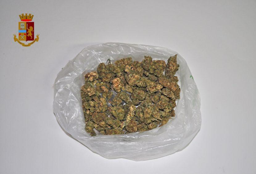 Adrano (CT), occultava droga: scoperto dal fiuto del cane della Polizia