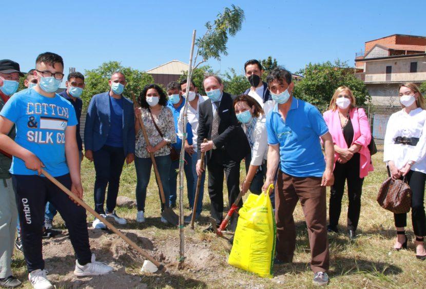 """Iniziativa """"mille alberi per Paternò"""" a cura dell'istituto """"Francesco Redi"""""""