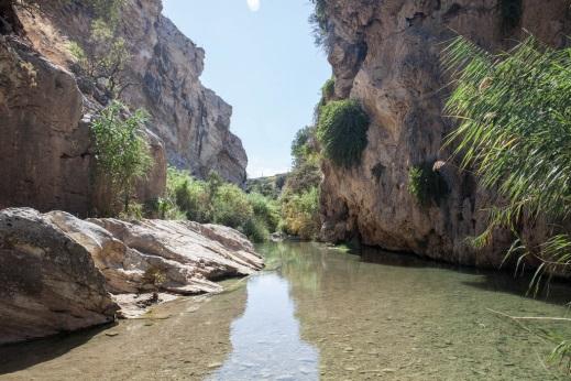 Giornata Mondiale dell'Ambiente: sette escursioni fluviali promosse da BCsicilia