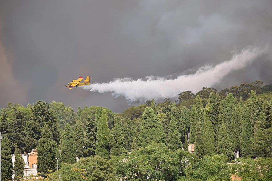 La Sicilia vittima degli incendi: tra scarsa prevenzione e costi elevati