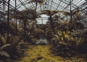 Garden Festival porta design, natura e futuro a Catania