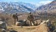 Afghanistan: il tormento di un Paese raccontato dai suoi autori