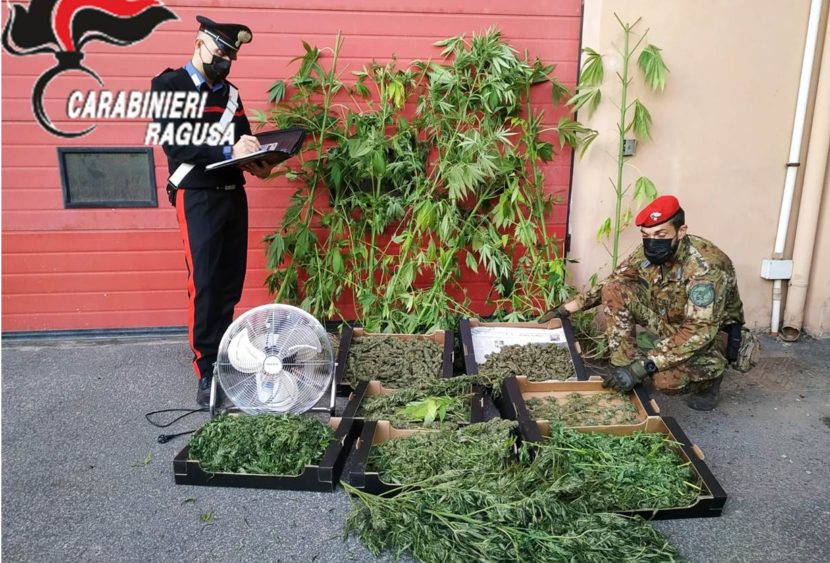Vittoria: spaccio di sostanze stupefacenti. Sequestrati 4,6 kg di marijuana
